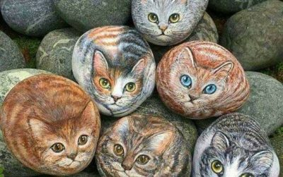 Commentary: stop painting rocks to look like cats